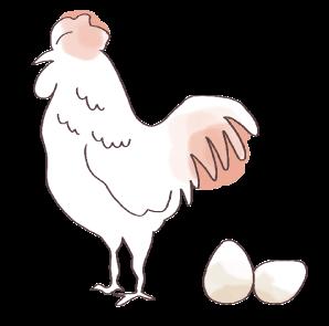 産卵率の向上