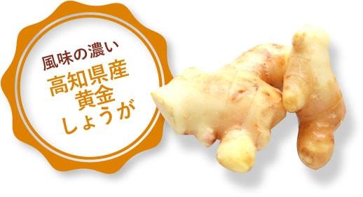高知県産黄金ショウガ